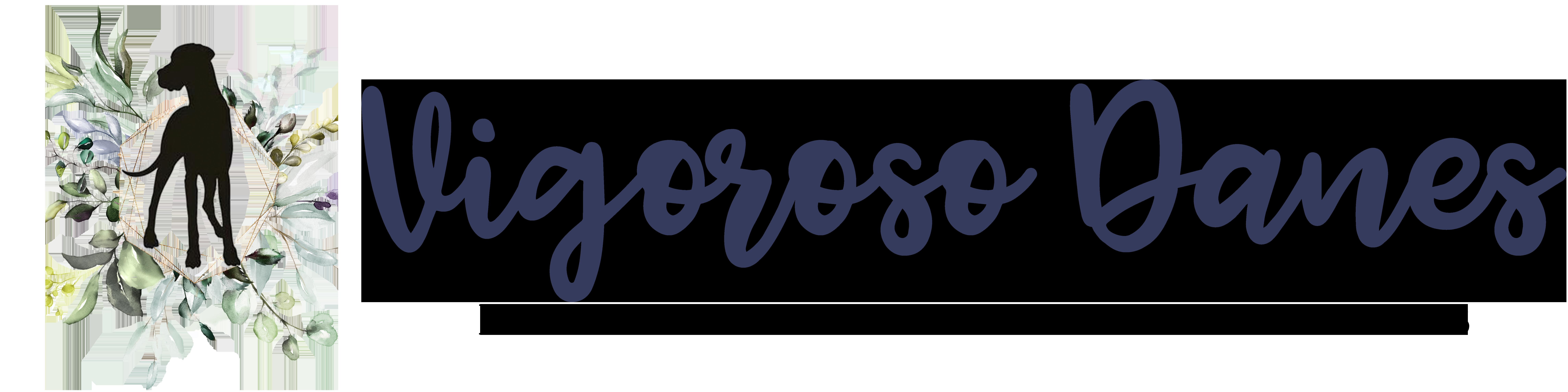 vigoroso danes logo